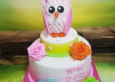 עוגת ינשוף ורוד