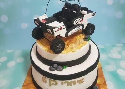 עוגת פולאריס רייזר